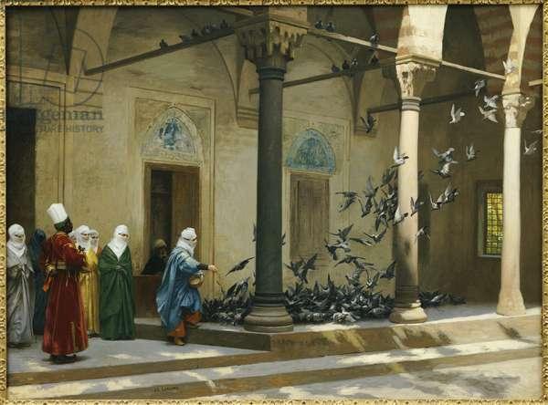 Harem Women feeding Pigeons in a Courtyard (oil)