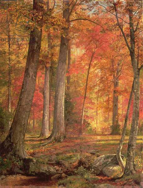 Path in the Forest, 1865 (oil on panel)