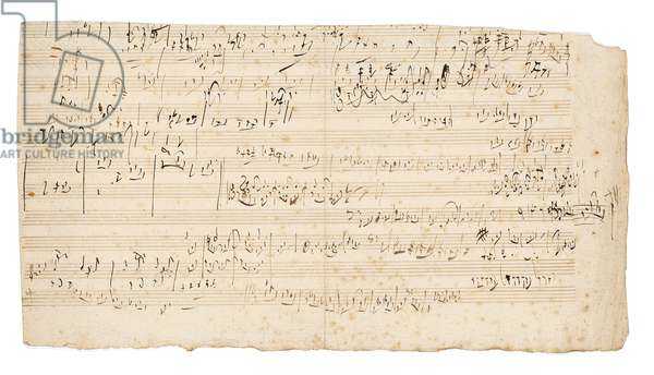 Autograph music manuscript, a sketchleaf for the slow movement of the String Quartet in C, Op.59, No.3, the third 'Razumovsky' quartet, Vienna, c.1806 (pen & ink on paper)