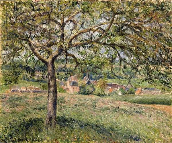 Apple Tree in Eragny, 1884 (oil on canvas)