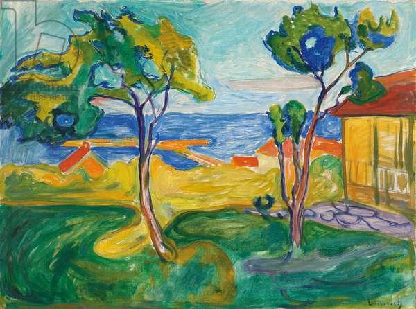 The Garden in Asgardstrand, 1904-1905 (oil on canvas)