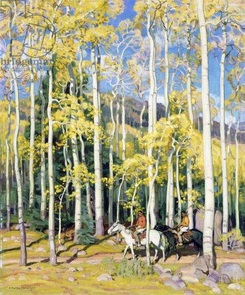 Towering Aspen, Rio Hondo Canyon, New Mexico,  (oil on canvas)