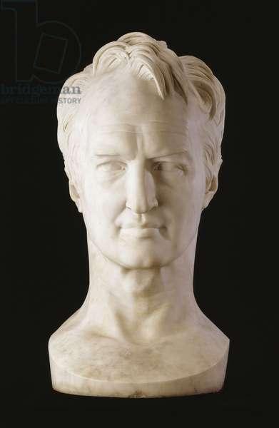 A Monumental Marble Bust of Alexander von Humboldt, 1843 (carved marble)