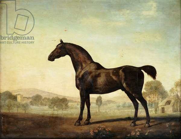 Sweetwilliam', a Bay Racehorse, in a Paddock, 1779 (oil on panel)