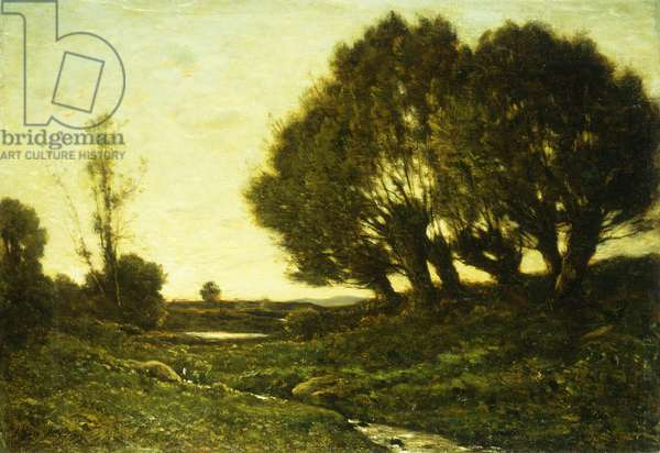 A Wooded Landscape with a Stream, 1903 (oil on canvas)