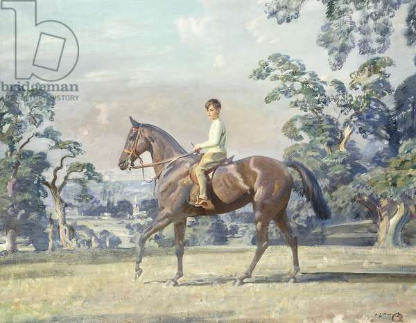 Arturo Von Schroeders on a Polo Pony in a Landscape, c.1929 (oil on canvas)