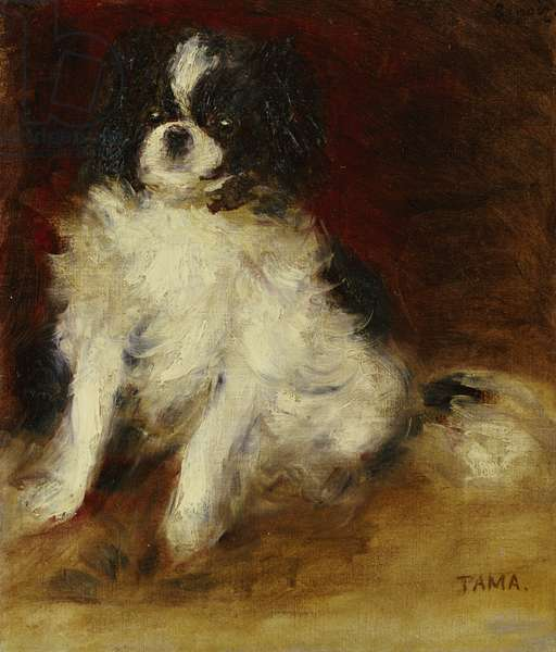 Tama (oil on canvas)