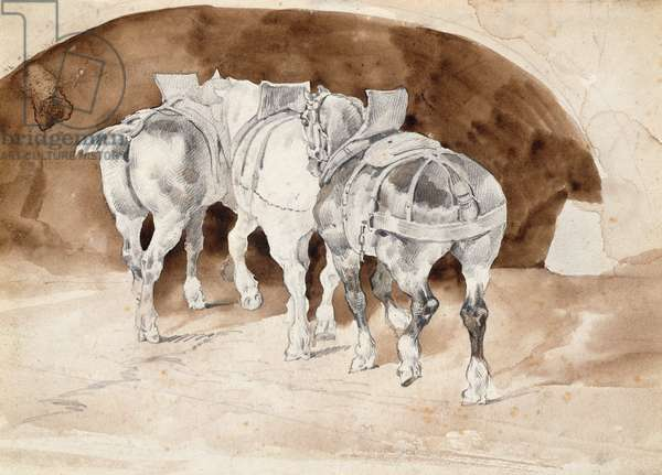 Three heavy horses in harness (pencil & sepia wash)
