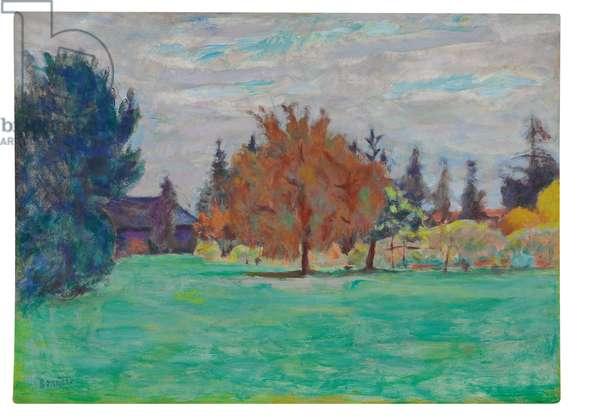 Arbre Jaune, Le Cos au Grand-Lemps, c.1913 (oil on paper laid down on canvas)