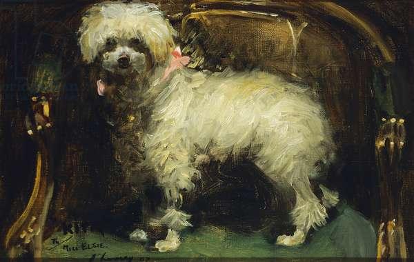 Kita, 1907 (oil on canvas)