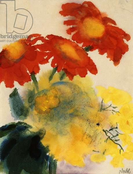Dahlia; Dahlien, c.1950 (watercolour, brush and black ink on japan paper)