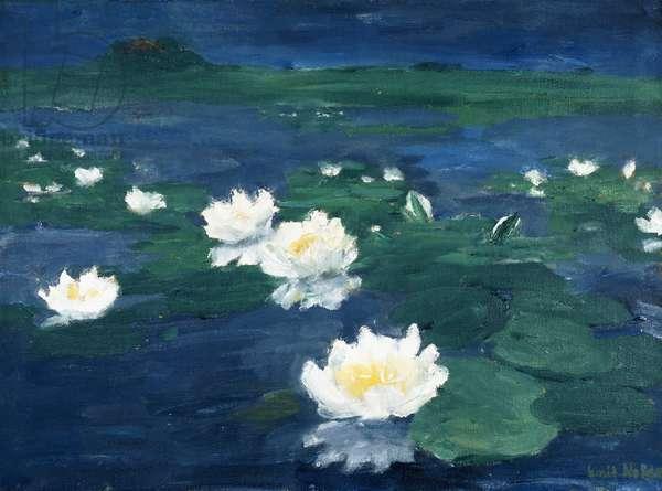 Waterlillies; Wasserrosen, 1917 (oil on canvas)
