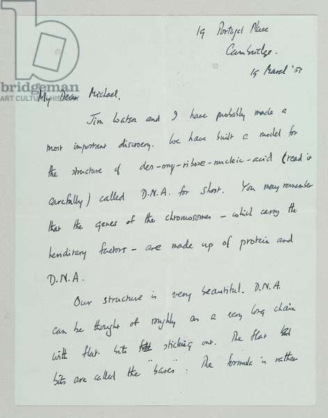 Autograph letter outlining the discovery of the structure and function of DNA, Cambridge, 19th March 1953 (pen & ink on paper) (see also 742024 and 808637-43)