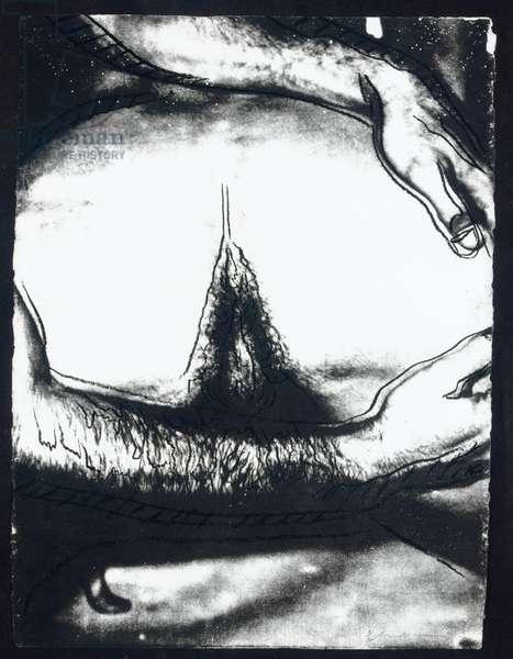 Sex Parts (F. & S. II.172-77), 1978 (screenprint)