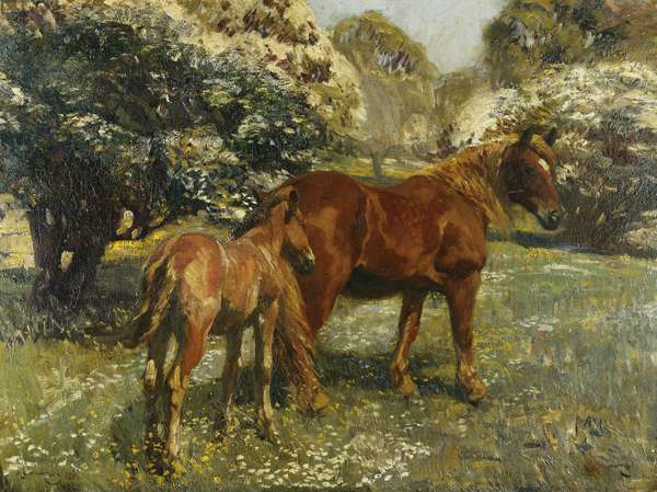 Mare and Foal, 1909 (oil on canvas)