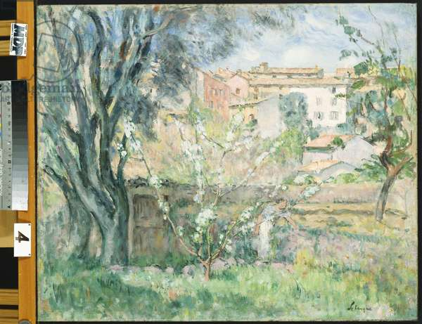 The Artist's Garden at Cannet, 1931 (oil on canvas)