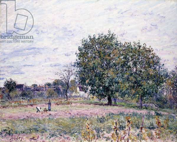Walnut Trees, Effect of the Setting Sun - First Day of October, 1882 (oil on canvas)