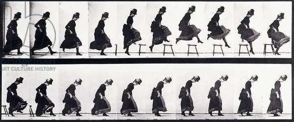 Motion Study, c.1872-1885 (collotype plate)