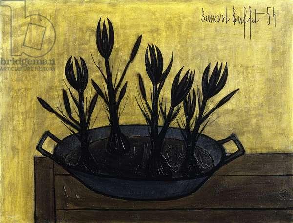 Crocuses on a Plate; Crocus dans un Plat, 1954 (oil on canvas)