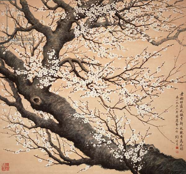 Plum Blossoms, 1956 (hanging scroll, ink & colour on paper)
