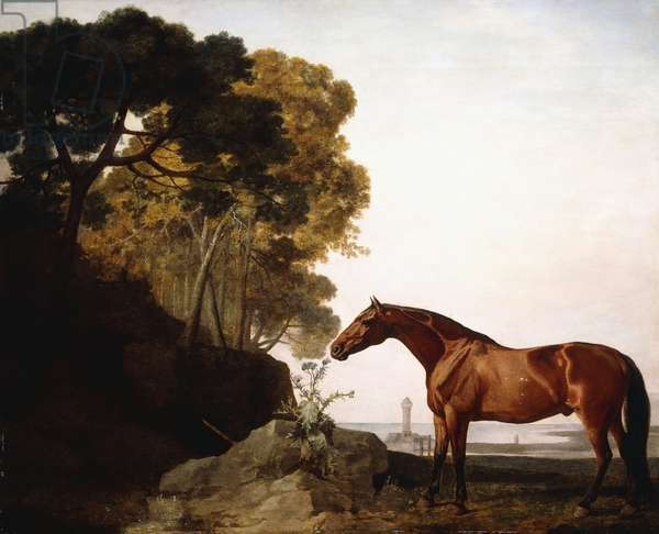A Bay Arab in a Coastal Landscape, 1779 (oil on panel)