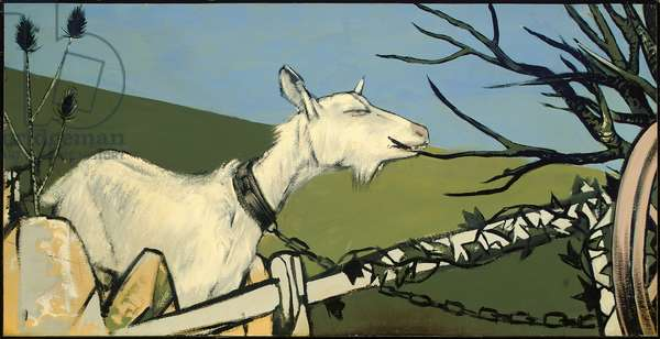 A goat nibbling on a branch (oil on board)