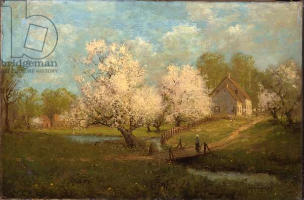 Spring Blossoms (oil on canvas)
