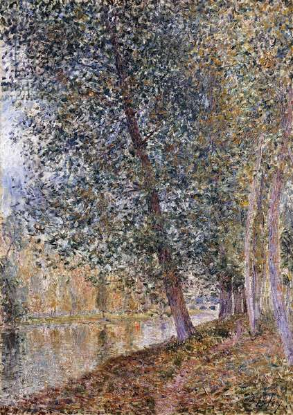 Autumn, the Banks of the Loing; L'Autumne, Bords du Loing, 1880 (oil on canvas)