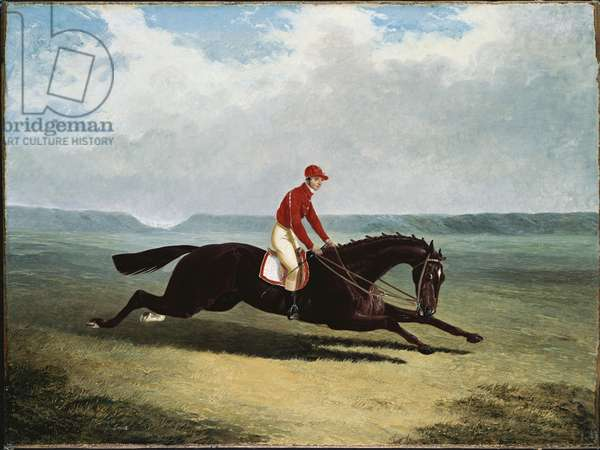 The Baron with Bumpy Up, at Newmarket (oil on canvas)