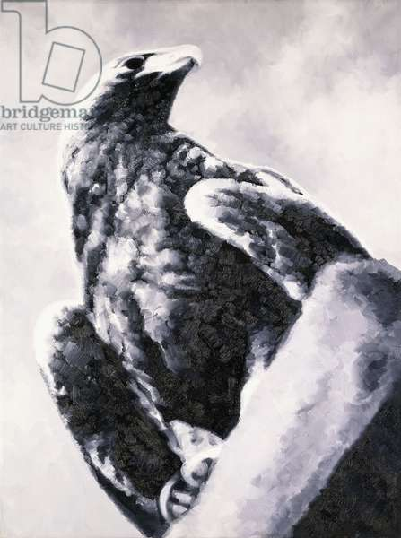 Eagle (Adler), 1972 (oil on canvas)