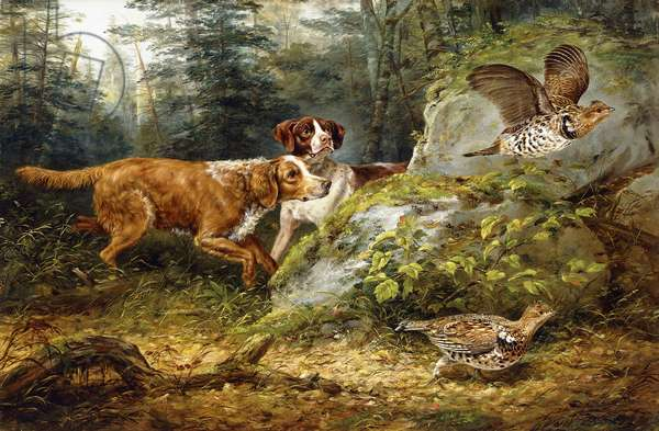 Flushed: Ruffed Grouse Shooting, 1857 (oil on canvas)