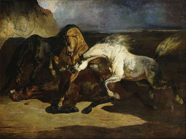 Stallions Fighting in a Stormy Landscape, (oil on canvas)