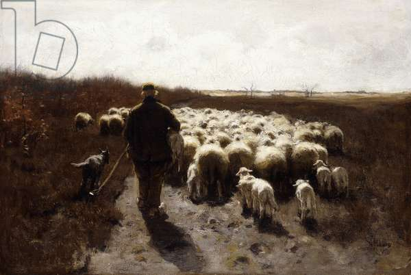 Return of the Flock,  (oil on canvas)