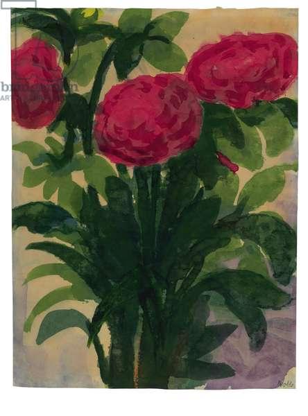 Roses, c.1925-1935 (watercolour on Japan paper)