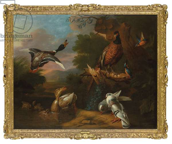 A pheasant, pigeons, ducklings, and kingfishers with a mallard taking flight at a wooded pool, a landscape beyond (oil on canvas)