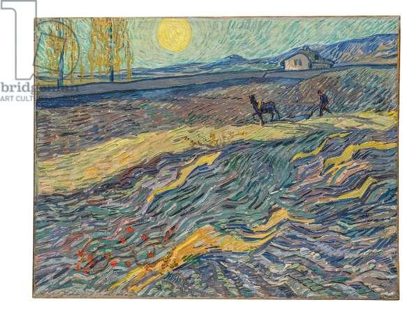 Farmer in a Field, 1889 (oil on canvas)