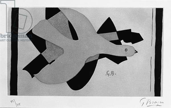L'Oiseau et son Ombre II, 1961 (colour etching)