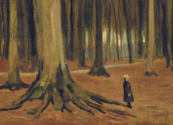 A Girl in a Wood, 1882 (oil on canvas)