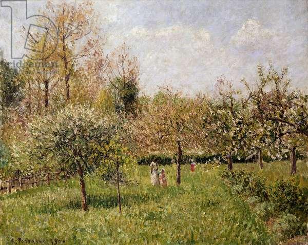 Spring at Eragny; Printemps a Eragny, 1900 (oil on canvas)