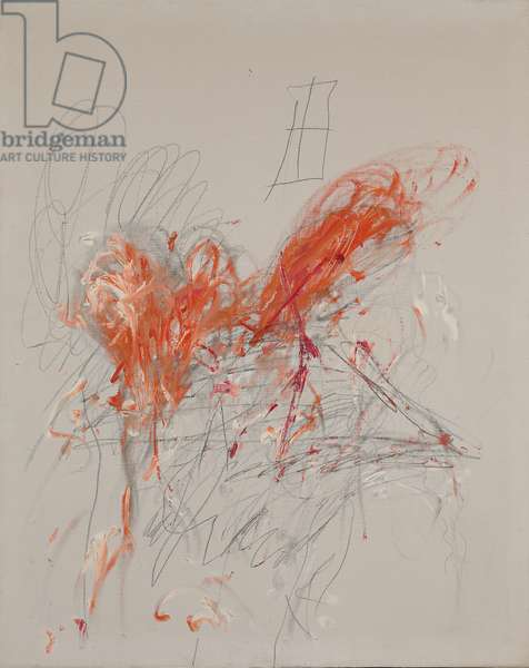 Leda and the Swan, 1963 (oil, graphite and wax crayon on canvas)