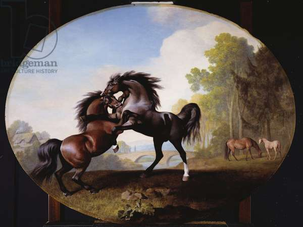 Stallions Fighting, 1781 (enamel on Wedgwood biscuit earthenware)