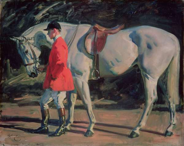 """Study of the Artist's Favourite Grey Hunter """"Isaac"""""""