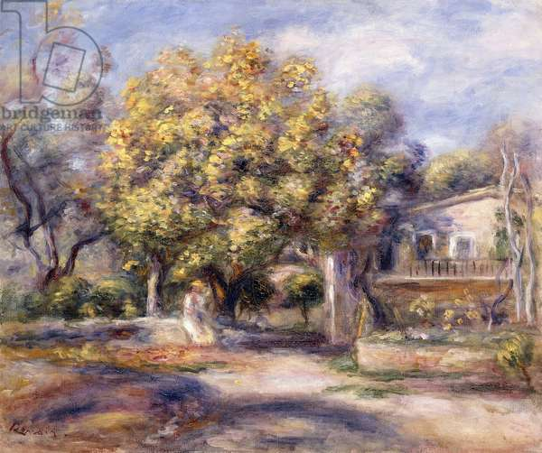 House at Cagnes, c.1905 (oil on canvas)