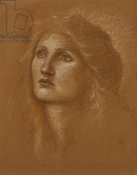 Head of a Woman, 1890 (coloured chalks on terracotta coloured paper)