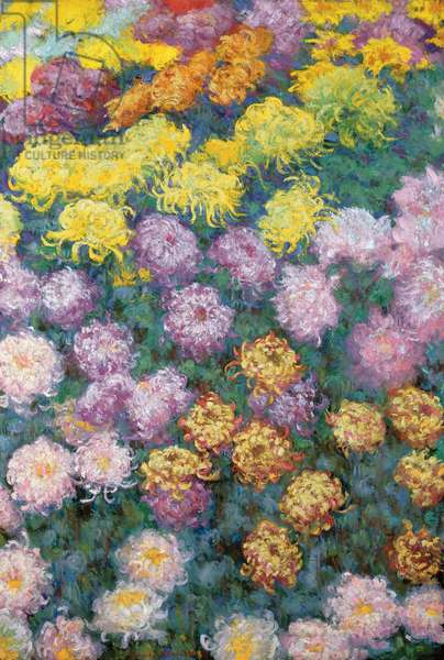 Massif de Chrysanthemes, 1897 (oil on canvas)