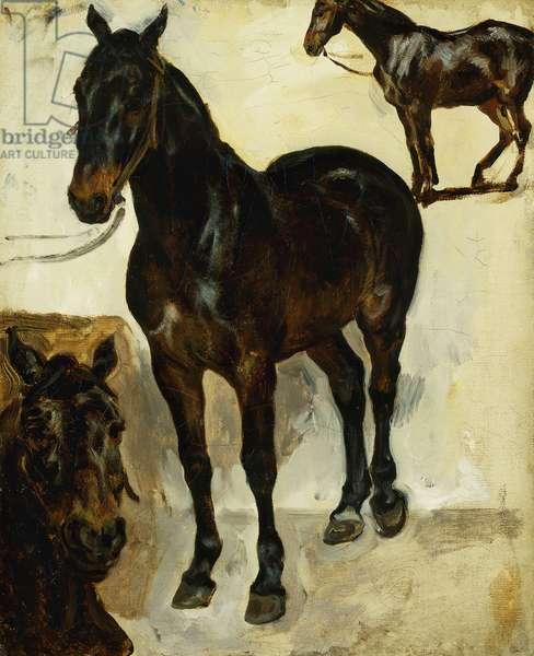 Three Studies of Horses; Trois Etudes de Chevaux, c.1823 (oil on canvas)
