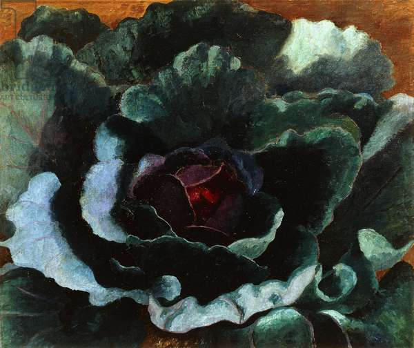 Cabbage, 1956 (oil on canvas)