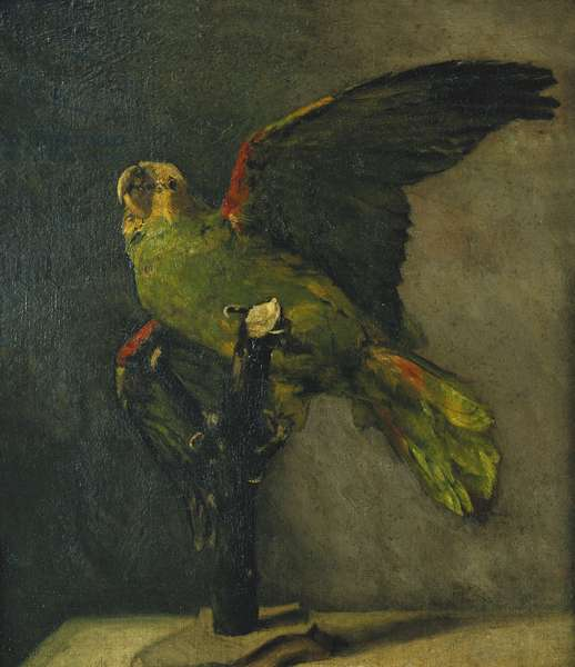 The Green Parrot; Le Perroquet Vert, 1885 (oil on canvas laid on panel)