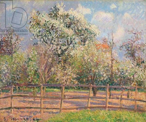 Pear Trees in Bloom, Eragny; Poiriers en fleur, Eragny, 1894 (oil on canvas)