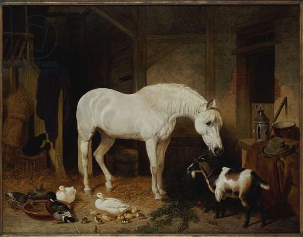 Stable Companions (oil on canvas)